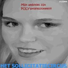 Het SollicitatieCircus_133 poly-professionele ambities