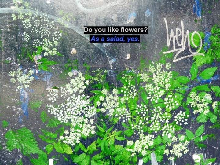 Small Talk do you like flowers voor FB